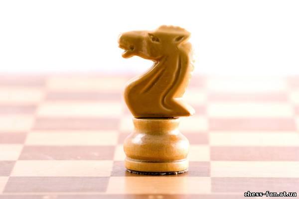 Что за фигура ферзь в шахматах